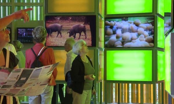 Interior del Pabellón de España en Floriade 2012