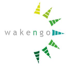Wakengo, marketing online a pie de calle