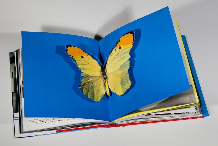 Libros que son algo más que imágenes y palabras