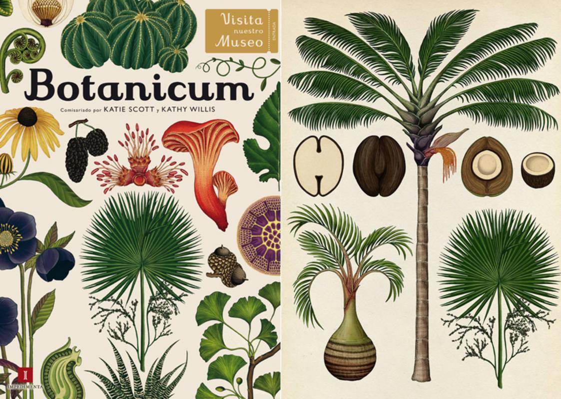 """Botanicum"": un paseo virtual por el reino vegetal"
