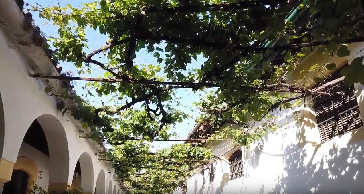 Hablando de pensiones en Jerez